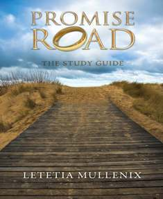 Promise Road: The Study Guide