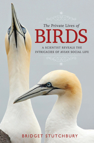 The Private Lives of Birds: A Scientist Reveals th...