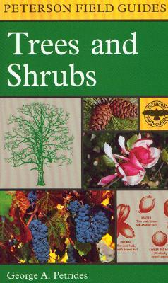 A Field Guide to Trees and Shrubs: Northeastern an...